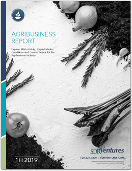 Agribusiness Report - 1H 2019
