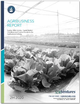 Agribusiness Report 2H 2020